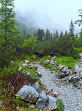 Great Cold Valley summer view (High Tatras, Slovakia). Royalty Free Stock Photo