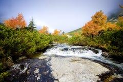 Great Cold Valley, Vysoke Tatry & x28;High Tatras& x29;, Slovakia. Outdoor, outdoors, outside, exterior, exteriors, europe, eastern, republic, czechoslovakia royalty free stock photography