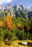 Great Cold Valley, Vysoke Tatry & x28;High Tatras& x29;, Slovakia. Outdoor, outdoors, outside, exterior, exteriors, europe, eastern, republic, czechoslovakia stock photos