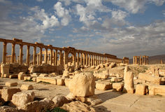 The great colonnade of Palmyra Royalty Free Stock Image