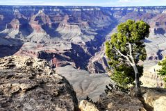 Great Colorado Canyon Stock Photos
