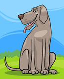 Great dane dog cartoon illustration. Cartoon Illustration of Funny Gray Great Dane Dog against Rural Scene with Blue Sky and Green Grass Stock Photo