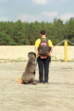 The great dane dog and its owner looking into the distance Stock Photography