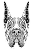Great Dane dog zentangle stylized head, freehand pencil, hand drawn, pattern. Zen art. Ornate vector. Coloring. Royalty Free Stock Images