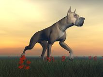 Great dane hund - 3D framför stock illustrationer