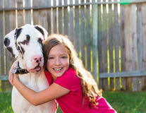 Great dane and kid girl hug playing outdoor. Great dane and kid girl hug playing together at backyard outdoor royalty free stock images