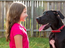 Great dane and kid girl looking eachother profile Royalty Free Stock Image