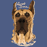 Great Dane Painting Poster. A vector illustration of Great Dane Painting Poster Stock Image
