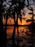 Lake Martin sunset Royalty Free Stock Photo