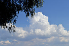 Great day on the river Danube. Blue Sky filled with huge clouds are reflected in the waters of the Danube stock photo