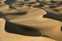 Great desert stock image