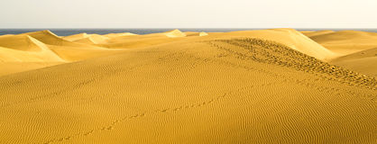 The great desert of Gran Canaria Royalty Free Stock Photography