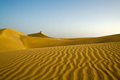 The great desert of Gran Canaria Royalty Free Stock Images