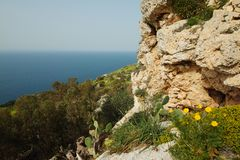 Dingli cliffs in Malta. Great Dingli cliffs in Malta Royalty Free Stock Photo