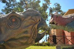 Great dinosaur Park, where traces of these ancient reptiles Royalty Free Stock Photography