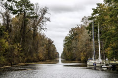 Great Dismal Swamp Canal stock photo