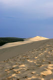 The great dune of Pyla (or Pilat) Royalty Free Stock Images