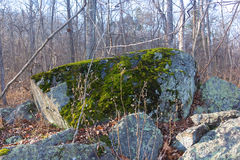 Great Falls National Park in Virginia and Maryland, USA. A huge mossy boulder in Great Falls Park, Virginia Stock Images
