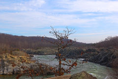 Great Falls on Potomac River, USA Royalty Free Stock Images