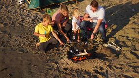 Great family holidays in camp. Roasting marshmallow together stock video footage