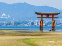Great floating torii during low tide Stock Images