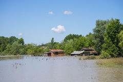 Great flood which included houses, fields, forests Royalty Free Stock Photo