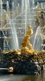 The Great Fountain of Peterhof. Samson. royalty free stock photo