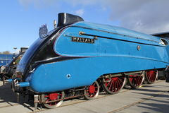 The Great Gathering Steam Train Mallard. Stock Photos