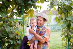 Great-grandfather with nephew. The baby nephew holded by his great-grandfather Stock Image