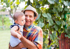 Great-grandfather with nephew. The baby nephew holded by his great-grandfather Royalty Free Stock Image