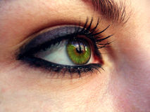 Great green eye. Looking to th efuture royalty free stock image