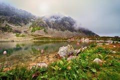 Great Hincovo mountain lake Stock Photos