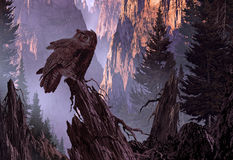 Great Horned Owl. A Great Horned Owl perched on a pine tree stump in a mountain canyon getting ready for the nights hunt Royalty Free Stock Photo