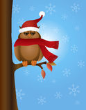 Great Horned Owl with Santa Hat on Tree Stock Image