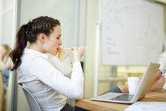 Great hunger. Pregnant businesswoman eating chinese noodles from box and watching video in laptop at lunch break in office Royalty Free Stock Images