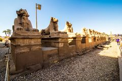 January, 2018 - Luxor, Egypt. Great Hypostyle Hall and clouds at the Temples of Karnak ancient Thebes. Luxor, Egypt royalty free stock image