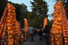 The Great Jack O`Lantern Blaze in Croton-on-Hudson in New York Royalty Free Stock Photos