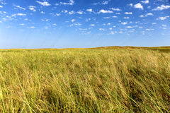 Great Kazakh steppe Stock Image