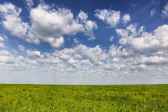 Great Kazakh steppe in springtime Stock Images