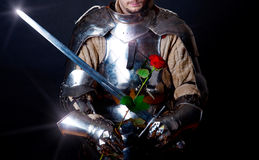 Great knight looking at beautiful flower Stock Images