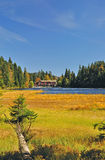 Great Lake Arbersee,Bavarian Forest,Germany. Autumn on great lake arbersee in the bavarian forest,bavaria,germany Royalty Free Stock Photography