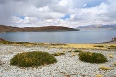 Great Lakes av Tibet Sj?Rakshas Tal Langa-TSO i sommar i molnig dag royaltyfria foton