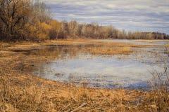 Great Lakes Coastal Wetlands Stock Photo