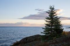 Great Lakes Shoreline i Dawn Light Fotografering för Bildbyråer