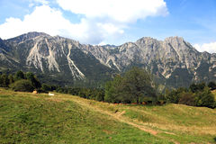 Great landscape of italian mountains called Venetian Prealps in. Landscape of italian mountains called Venetian Prealps in the province of Vicenza in Italy Royalty Free Stock Images