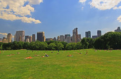 The Great Lawn in Central Park Royalty Free Stock Photos