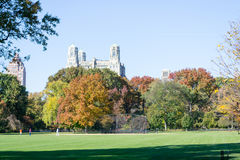 Great lawn located in the heart of Central Park during the fall Royalty Free Stock Image