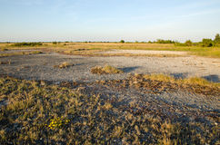 Great limestone plain Royalty Free Stock Images
