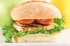 Great lunch sandwich. Delicious fresh sandwich made with fine organic chicken breast and italian seasoning flavors Royalty Free Stock Photo
