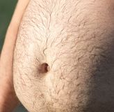 Great man`s stomach . Stock Images